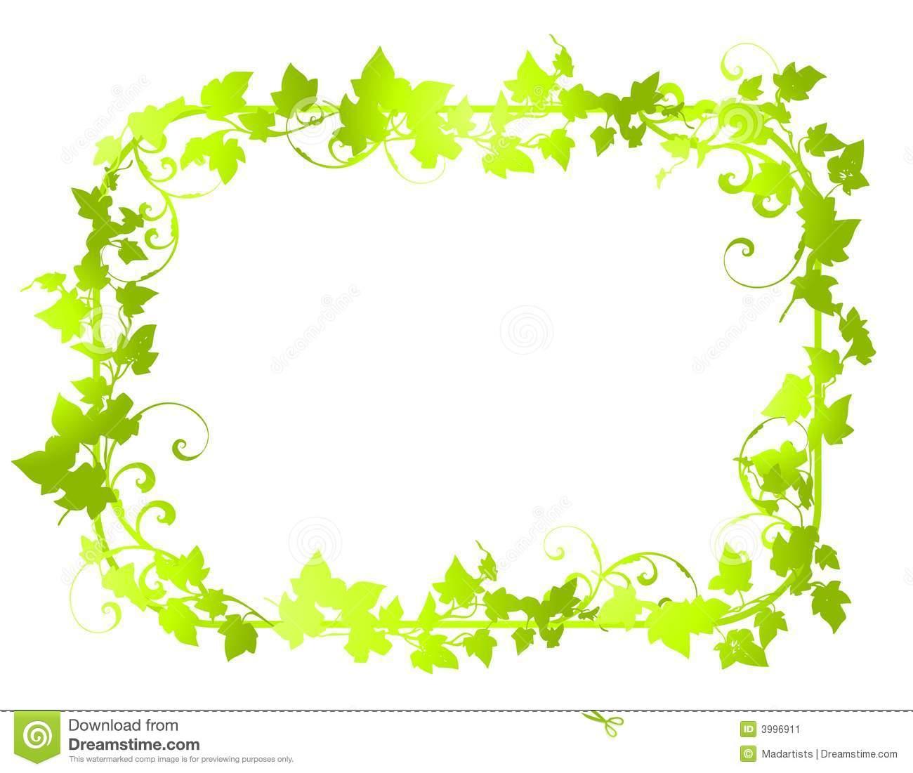 Green Vine Leaf Frame Borders 2 Stock Image.