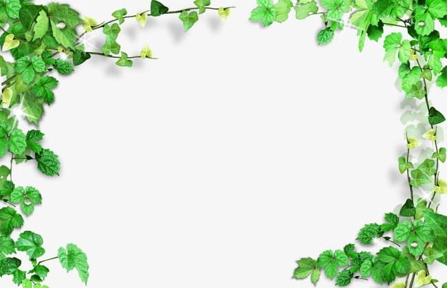 Green Leaves Frame PNG, Clipart, Backgrounds, Border.
