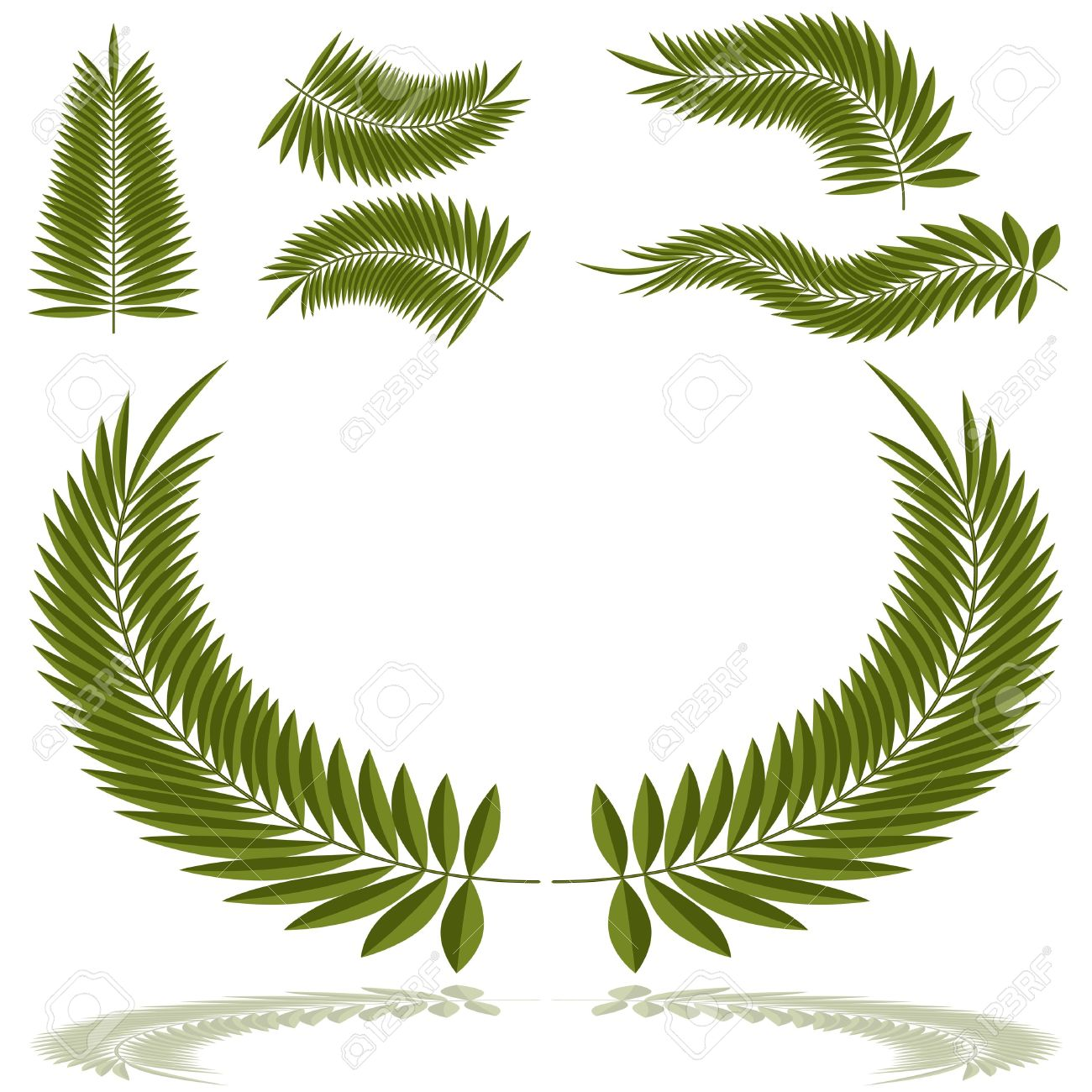 An Image Of A Set Of Palm Fronds. Royalty Free Cliparts, Vectors.
