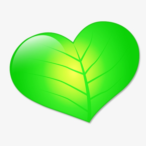 Heart Shaped Leaf Clipart.