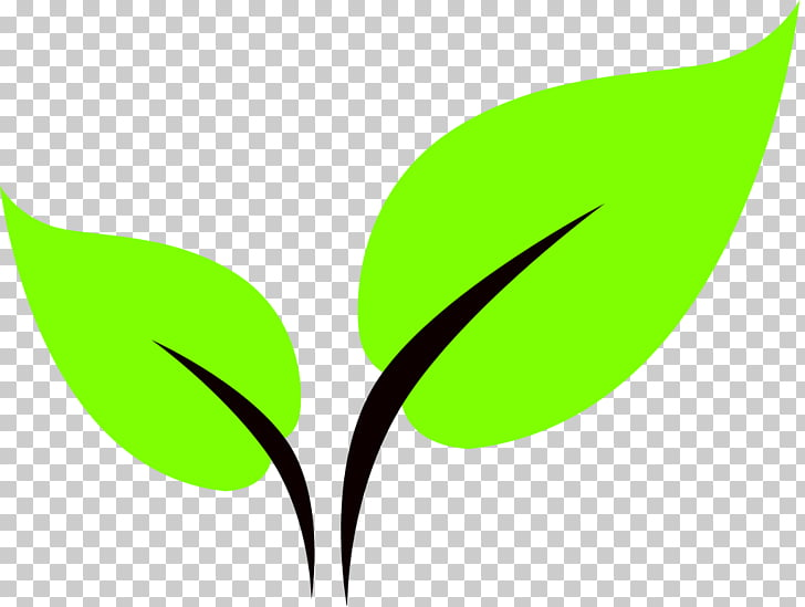 Computer Icons Leaf Scalable Graphics , Green Leaf Icon PNG.