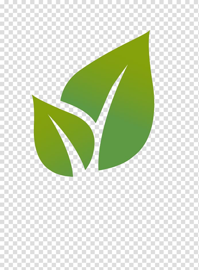 Two green leaves , Leaf Euclidean Illustration, Icon.