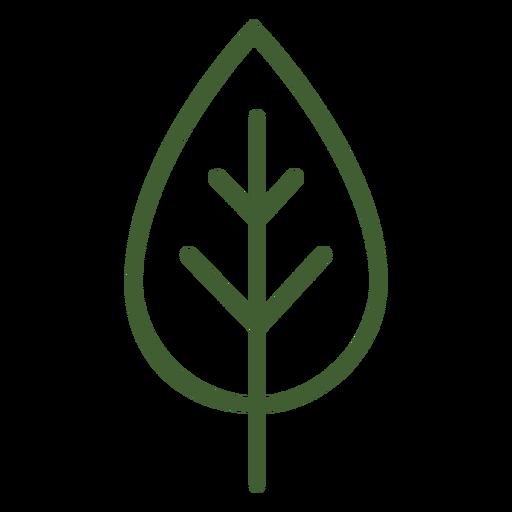 Flat leaf icon.