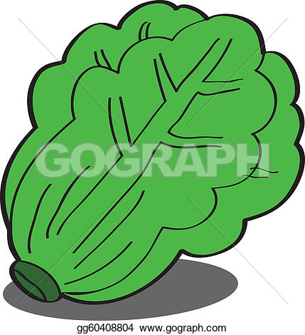 Royalty Free Lettuce Clip Art.
