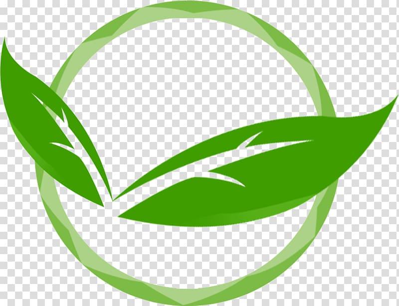 Green leaf , Logo , leaf transparent background PNG clipart.