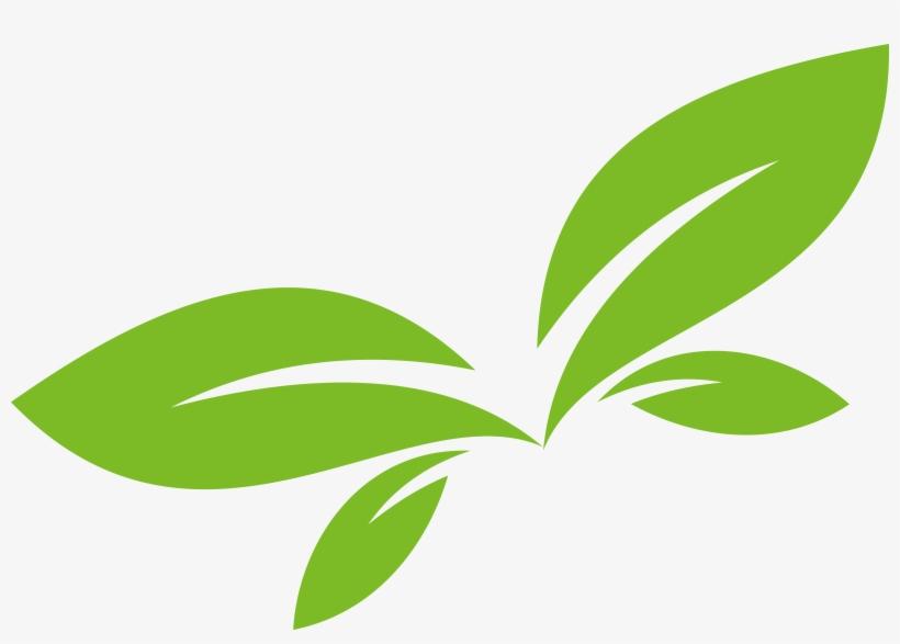 Leaf Logo Euclidean Vector.