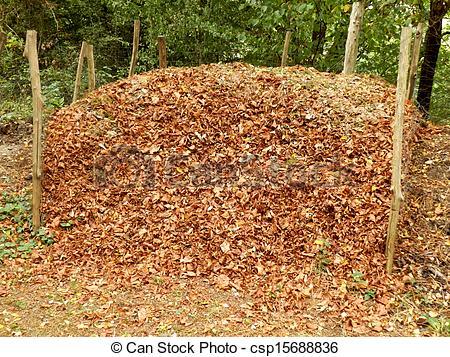 Stock Photos of Compost Heap.