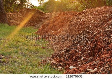 Garden Compost, Mulch Leaves. Stock Photo 112675631 : Shutterstock.