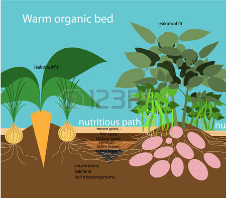 80 Mulch Stock Illustrations, Cliparts And Royalty Free Mulch Vectors.