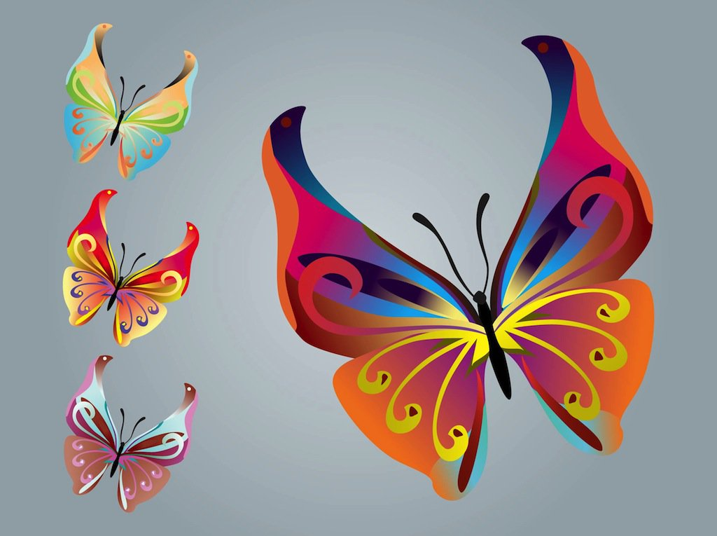 Vector nature designs with beautiful colorful butterflies. Insect.