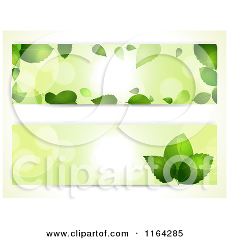 Clipart of Green Leaf and Light Flare Website Banners.