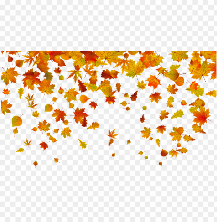 Download transparent fall leaves clipart png photo.