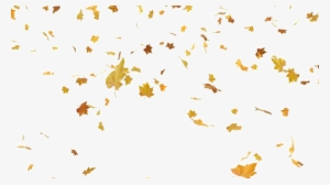Fall Leaves PNG, Transparent Fall Leaves PNG Image Free.