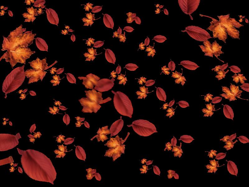 Falling Leaves Autumn Texture Overlay (Nature.