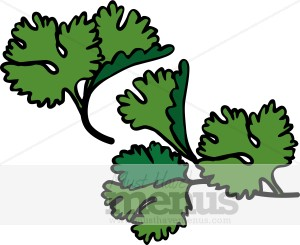 Parsley Sprigs Clipart.