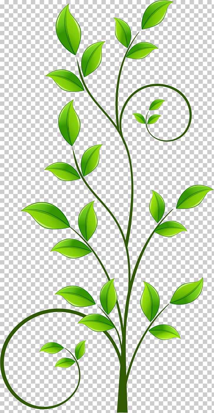 Illustration, Green leaf pattern PNG clipart.