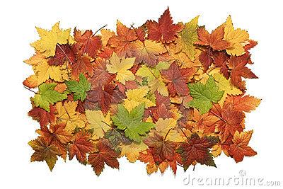 Leaf Pile Clipart.