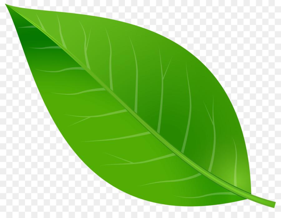 Banana Leaf Clipart clipart.