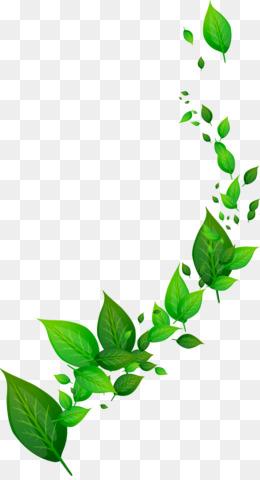 Green Leaf PNG.