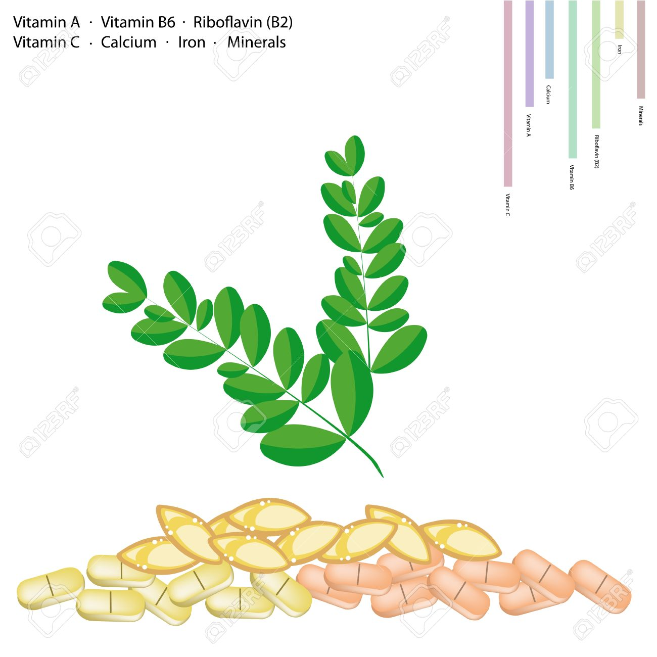 Healthcare Concept, Illustration Of Moringa Leaves With Vitamin.