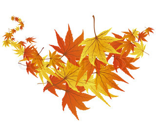 Background of autumn leaves. EPS 8 vector file included.