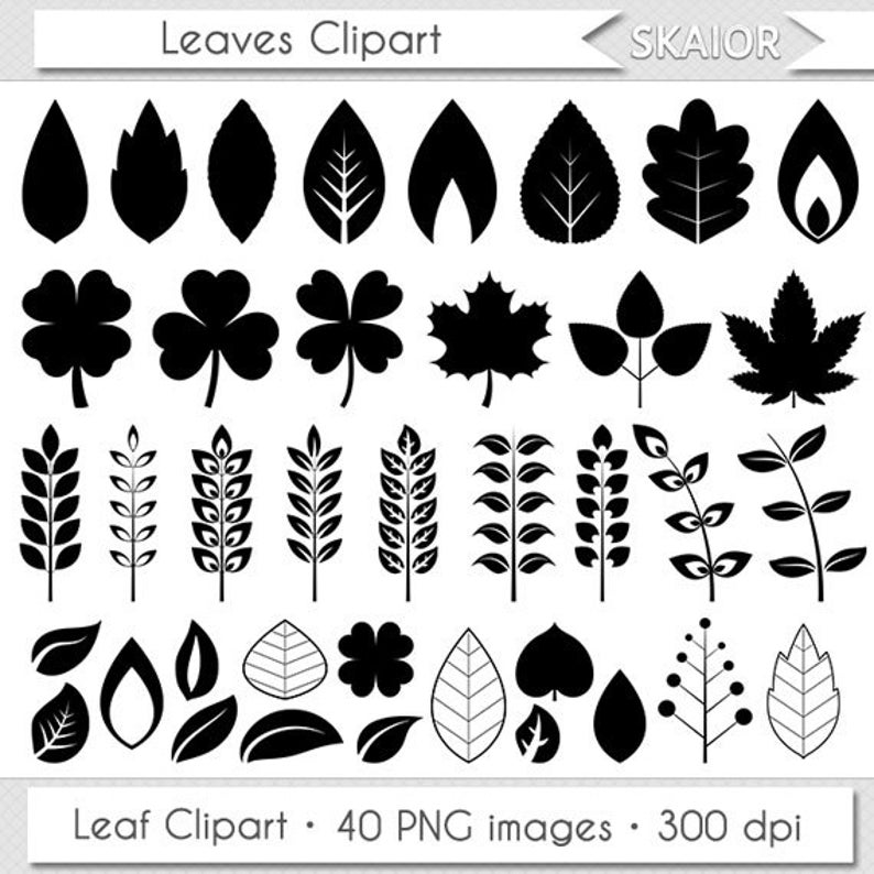Leaves Clipart Digital Leaves Clip Art Vector Leaf Clipart Leaf Silhouette  Invitations Scrapbooking Summer Leaves Spring Leaves Doodle Leaf.
