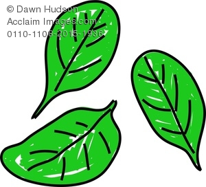 A Whimsical Drawing of Spinach Leaves Clipart Image.