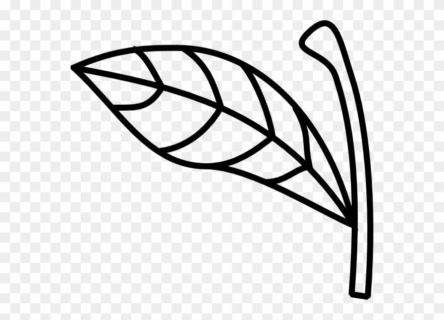 Apple Stem Leaf Clip Art.