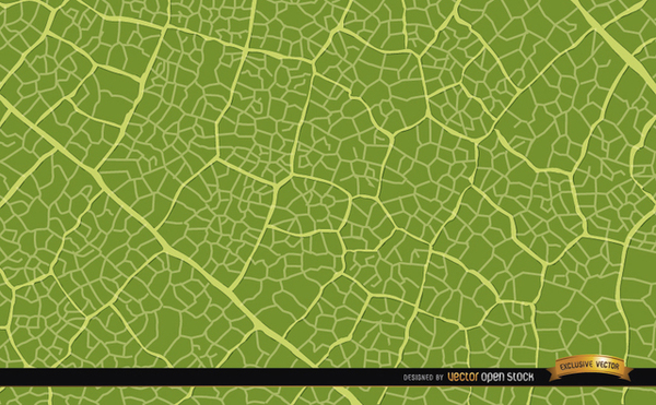Green Leaf Texture Background Free Vector.