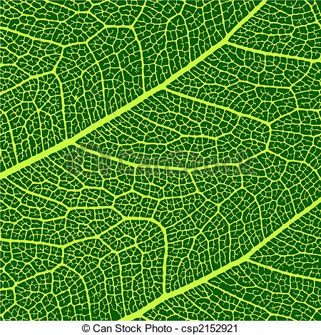 Vector Clip Art of vector leaves macro texture csp2152921.