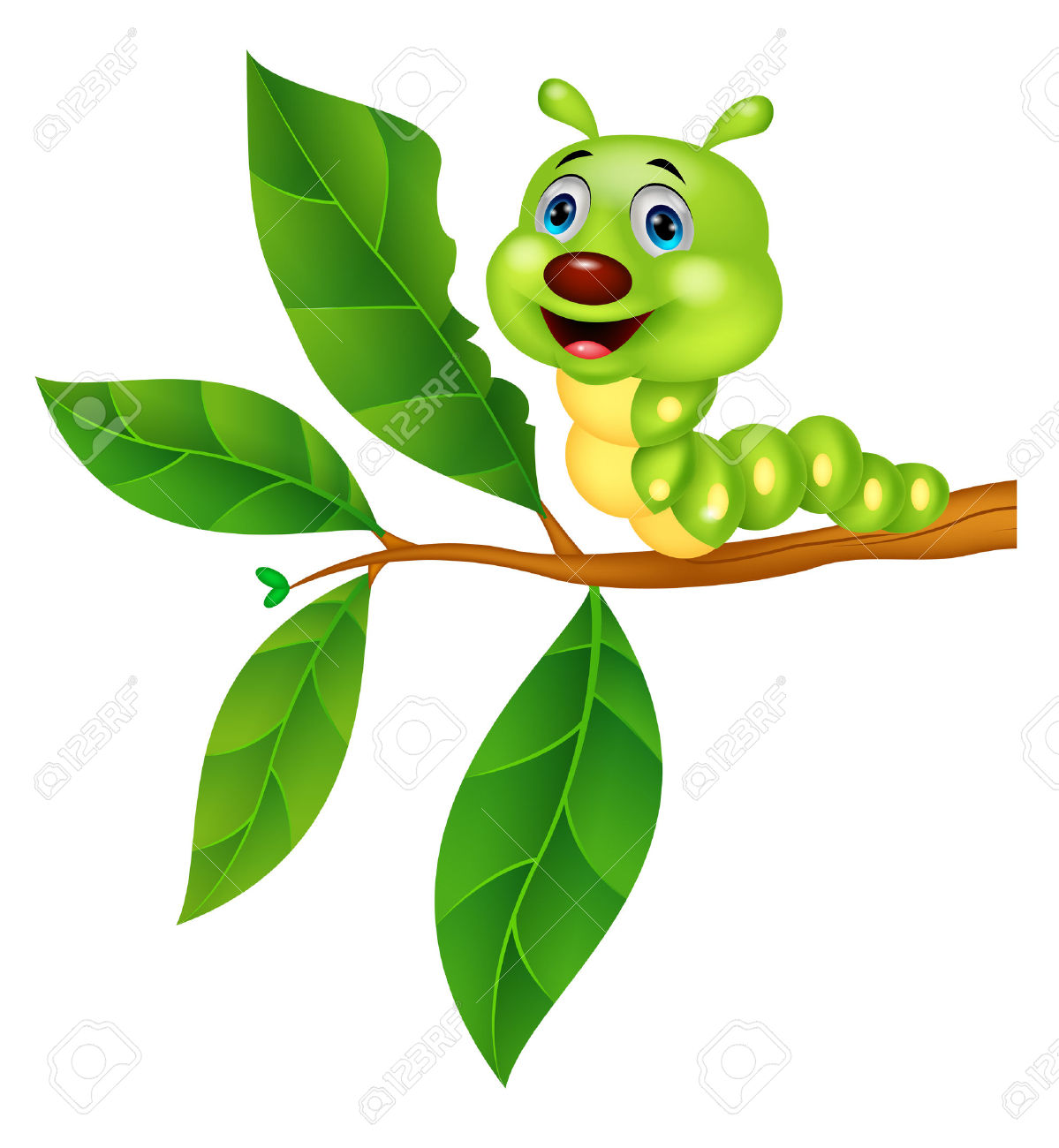 Leaf Worm Clipart