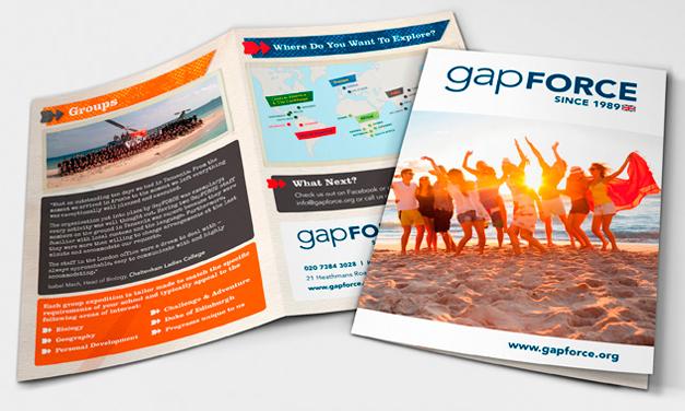 GapForce Leaflet Design.