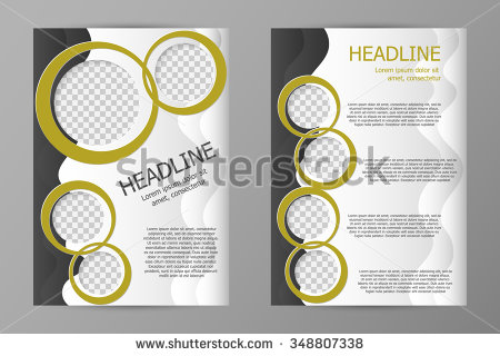 Vector Flyer Template Design Business Brochure Stock Vector.