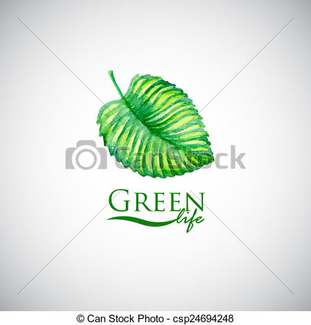 Drawing of Green life watercolor leaf like logo icon. Eco friendly.