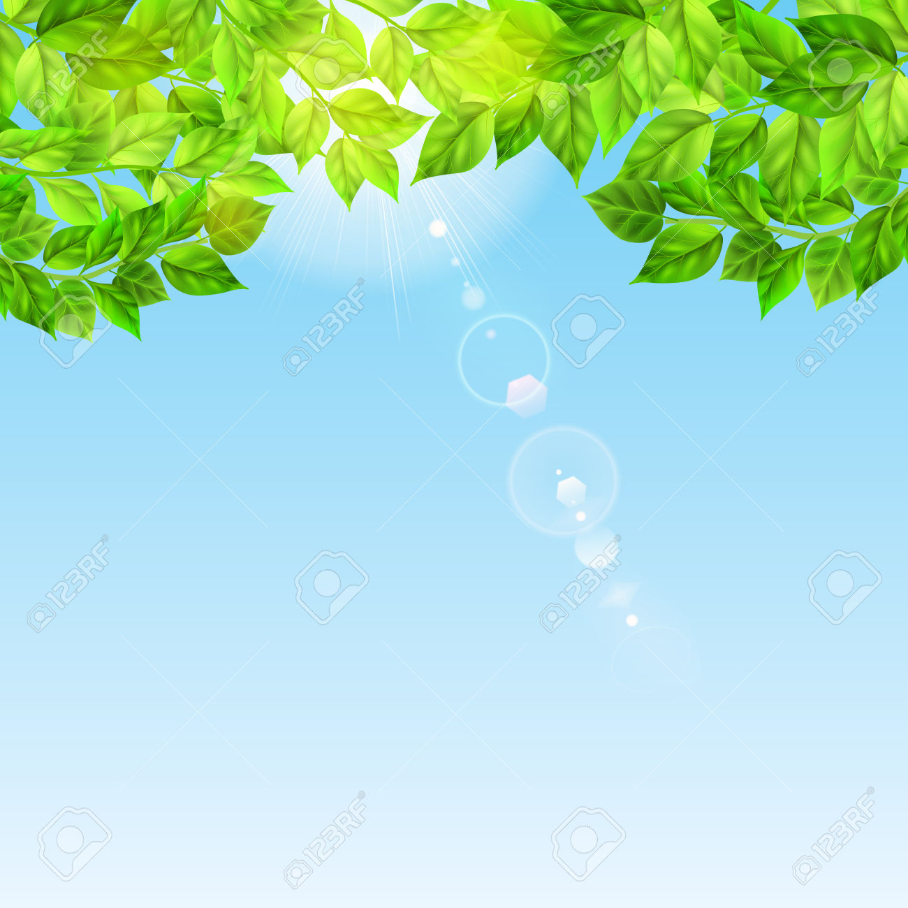 Background With Blue Sky And Sun Luminous Through Green Leaves.
