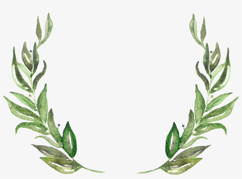 Leaves Png.