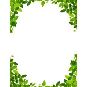 Leaf Border Clip Art & Look At Clip Art Images.