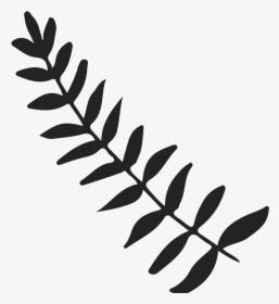 Leafy Branch Png, Transparent Png , Transparent Png Image.