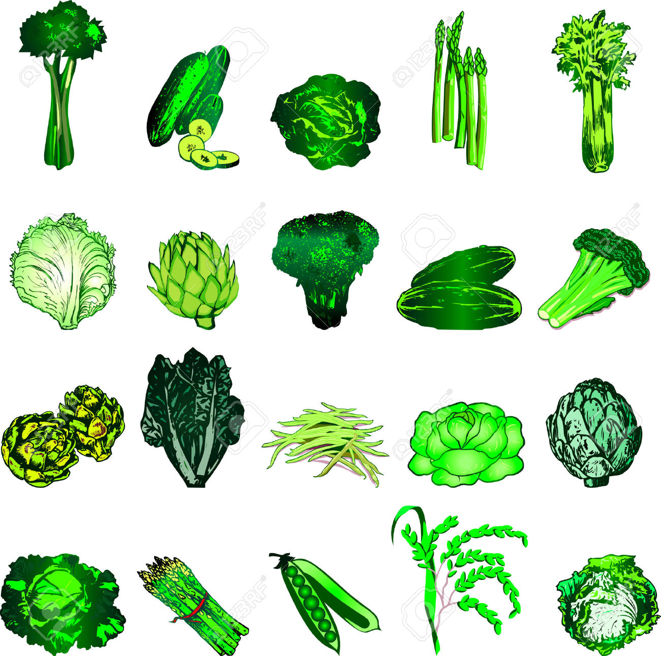 Leafy Vegetables Clipart.