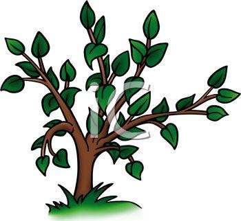 Leafy Cartoon Tree.