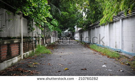Leafy Backstreet Background Stock Photo 210760282 : Shutterstock.
