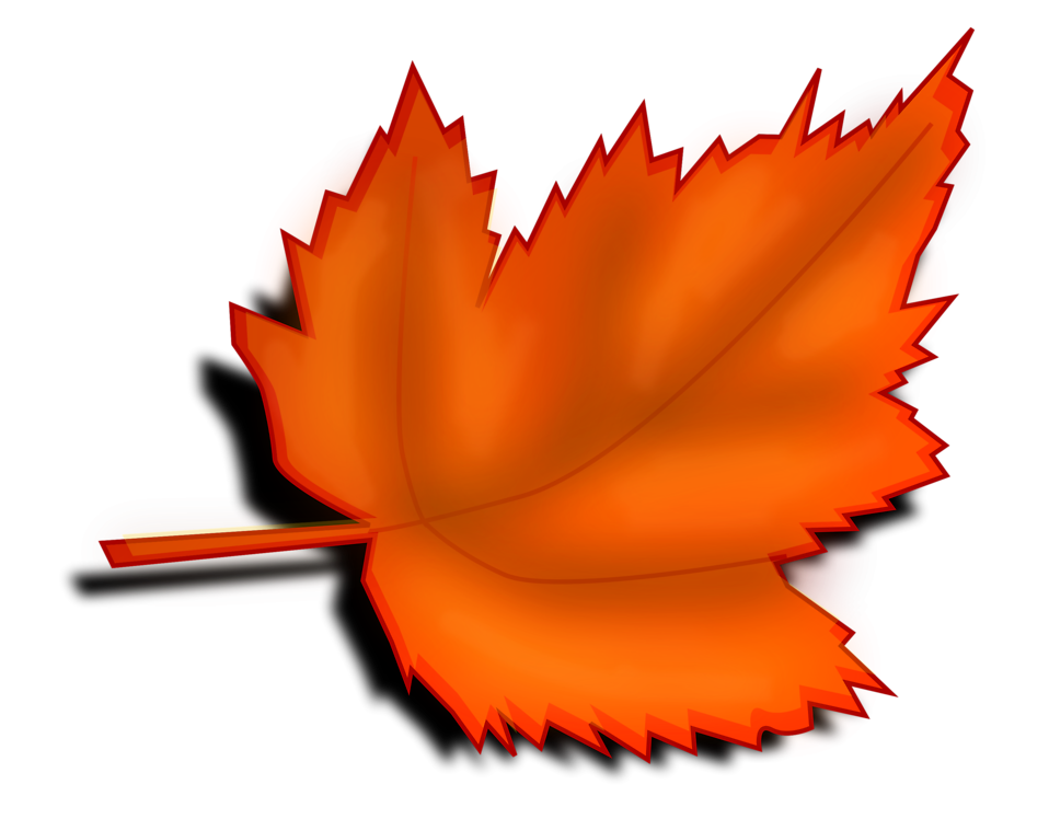 Leaves Transparent Background Clipart.