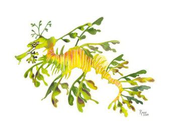 Leafy Sea Dragon Clipart.