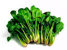 Green leafy vegetables clipart.