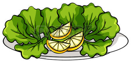 678 Leafy Vegetables Stock Vector Illustration And Royalty Free.