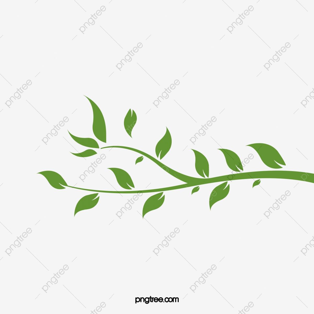 Fresh Green Leafy Vine Leaves, Vine Clipart, Fresh, Green.