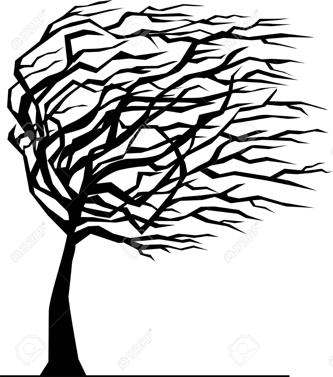 Silhouette of a tree by the wind.
