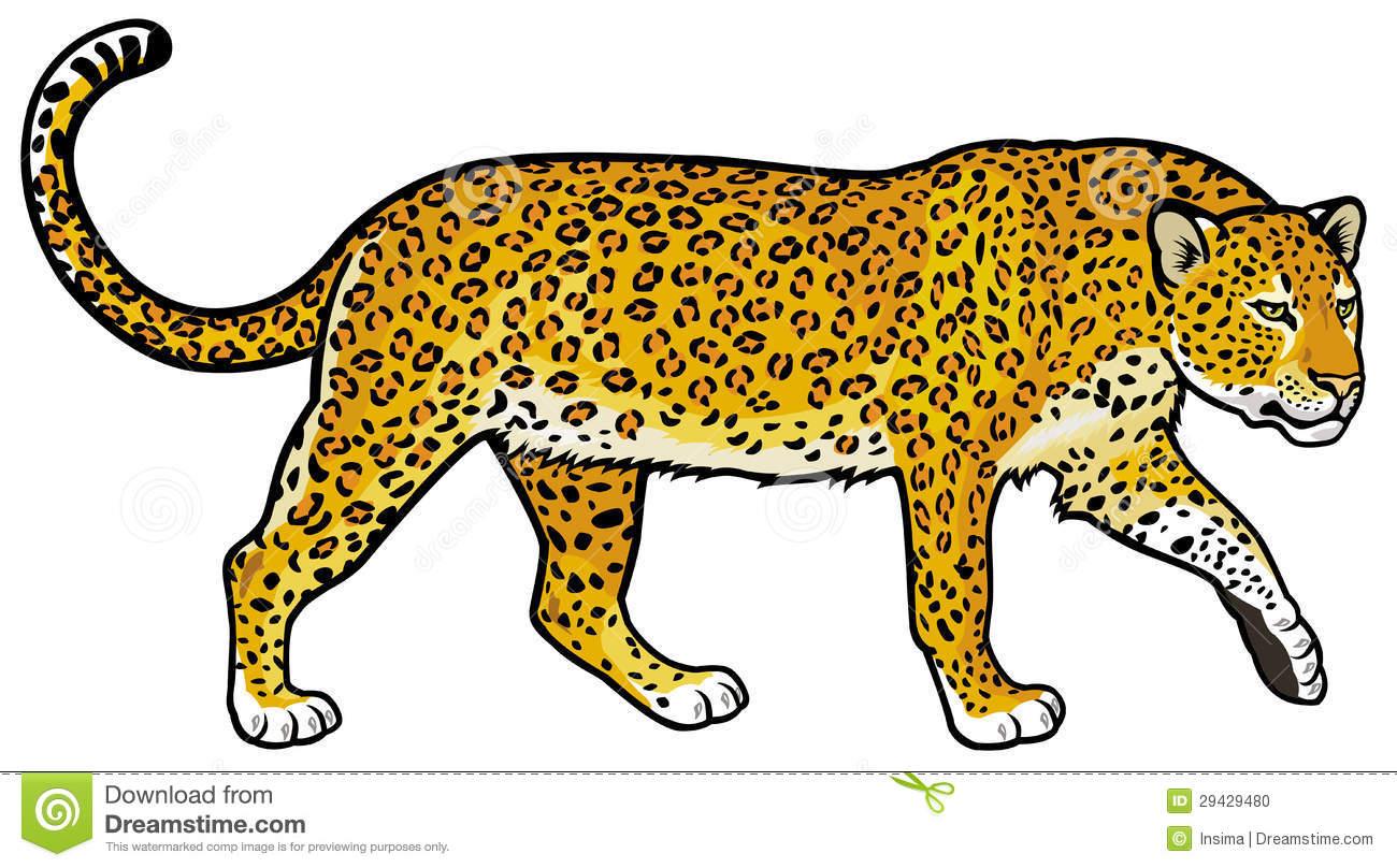Leopard Clipart & Leopard Clip Art Images.