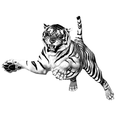 Jumping Tiger transparent PNG.