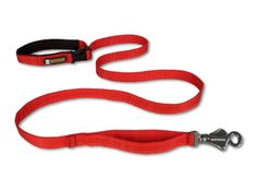 Dog leash and collar clipart.